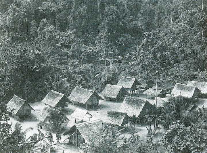 bougainville1
