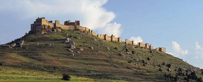 r_castillo_gormaz_t4200099