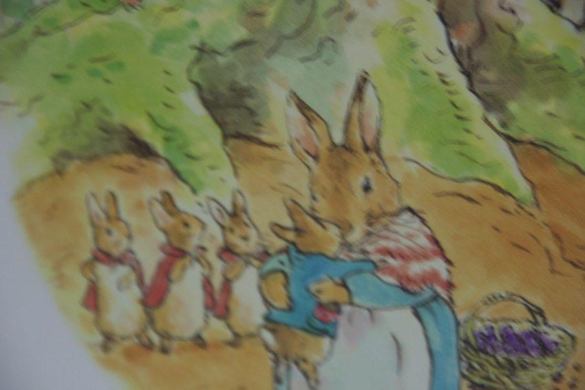 conejo-perico