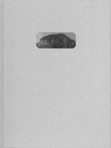 Archivo arqueológico de la arquitectura encontrada